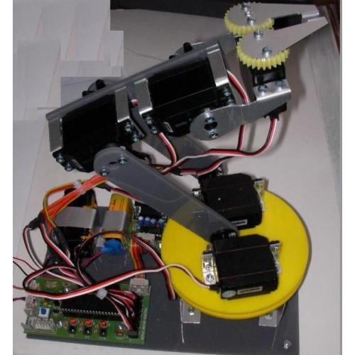 Robot Kol (Montajlı)